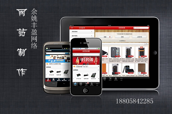 余姚网站制作丰盈网络专注于本地区网站建设、百度推广、小程序开发、熊掌号开发的公司
